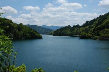 面河ダムの紅葉8