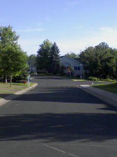 near the house.jpg