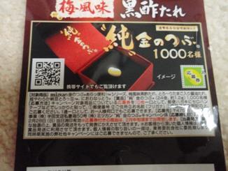 100131-2.jpg
