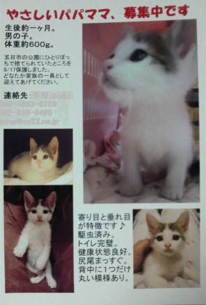 blog_daigo7.jpg