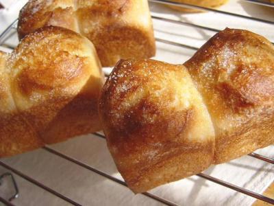 20080130ハニーシュガーミニ山食