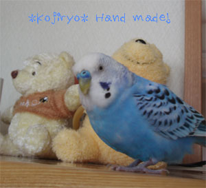 ryo110.jpg
