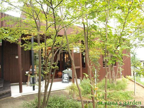 annna garden2