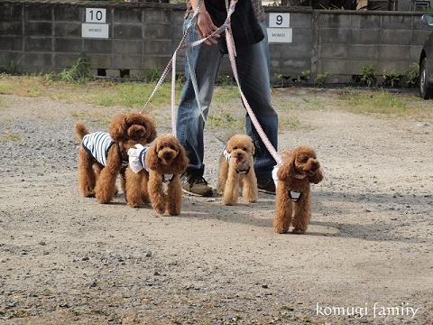 komugi family