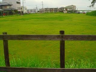 komugi 064