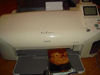 komugi 289