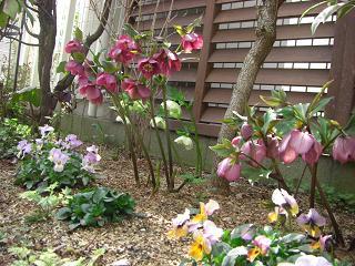 08.3.木の葉の庭 (4)