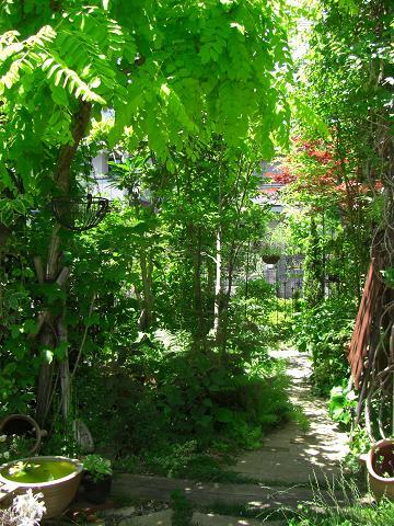 08.6.木の葉の庭 (2)