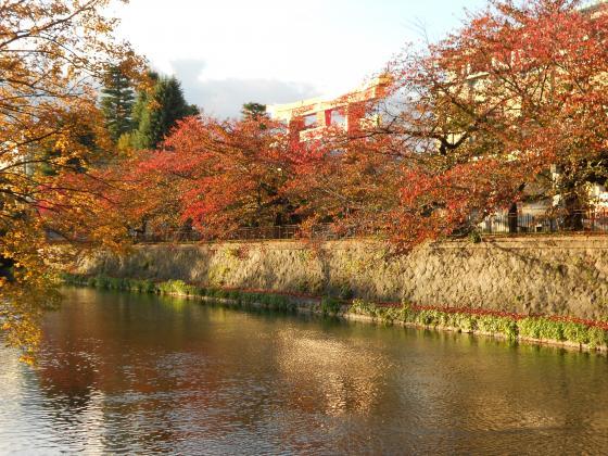 2011-11-20+025_convert_20111128211706.jpg