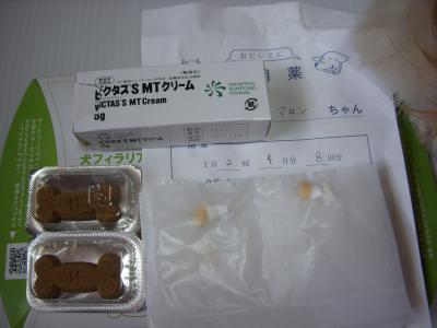 DSCN4259_convert_20090826094526.jpg