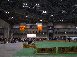 ドッグショー会場風景