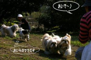 犬つかいのベンクラママ