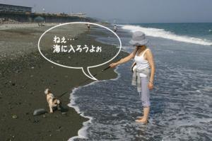 海に入ってみよ~よ