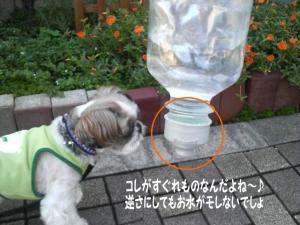 酸素水のキャップ
