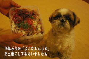 食べられないのにお行儀よくする小太郎