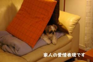 小太郎部屋