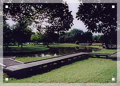 p_11.jpg