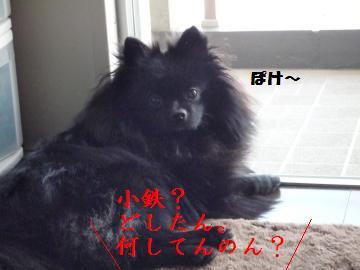 0909-1_convert_20080910005744.jpg
