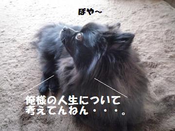 0909-3_convert_20080910005815.jpg