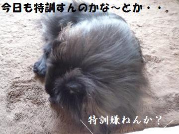 0909-7_convert_20080910010006.jpg