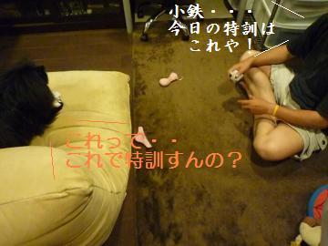 0910-1_convert_20080912001911.jpg