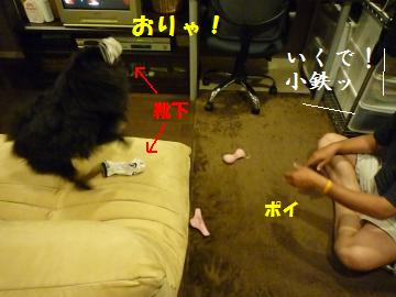 0910-2_convert_20080912001943.jpg