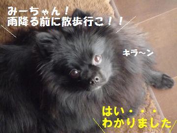 0921-2_convert_20080920144107.jpg