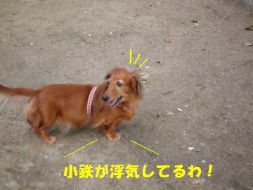 0921-9_convert_20080922072928.jpg