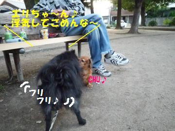 0922-3_convert_20080922212750.jpg