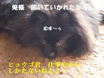 0923-2_convert_20080923160620.jpg