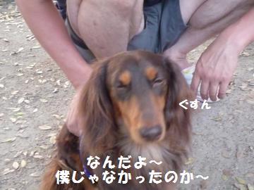 0924-11_convert_20080924212504.jpg