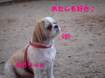 0924-15_convert_20080924212738.jpg