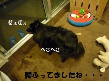 0924-17_convert_20080924212856.jpg