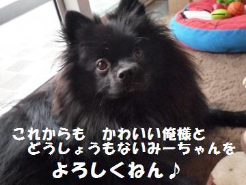 0924-7_convert_20080924094833.jpg
