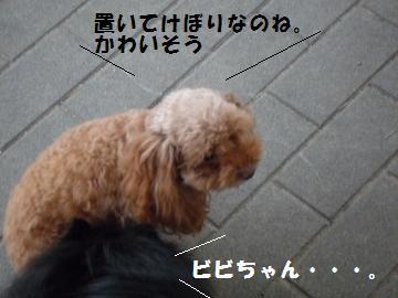0925-11_convert_20080925181049.jpg