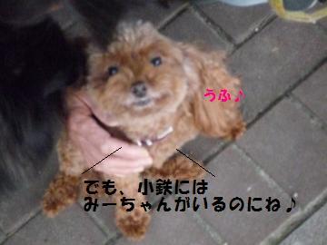 0925-12_convert_20080925181119.jpg