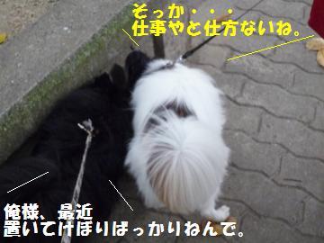 0925-5_convert_20080925180925.jpg