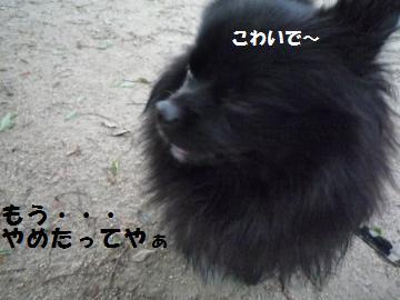 0927-15_convert_20080928002716.jpg