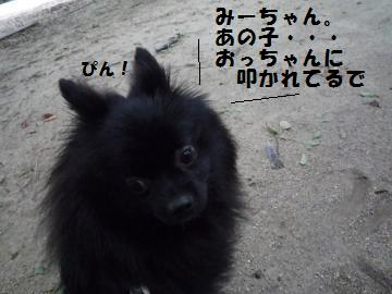 0927-17_convert_20080928002858.jpg