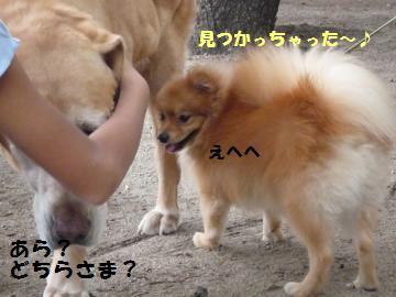 0927-5_convert_20080928002236.jpg