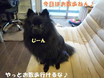 0930-3_convert_20081001081214.jpg