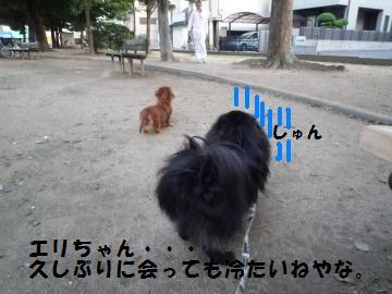 1002-1_convert_20081003013819.jpg