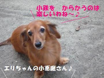1002-4_convert_20081003013952.jpg