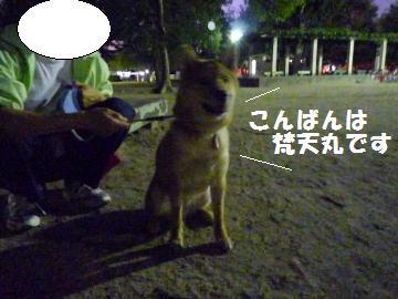 1003-3_convert_20081004031113.jpg