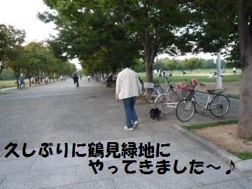 1004-1_convert_20081004215436.jpg