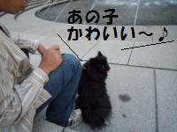 1004-5_convert_20081004215810.jpg