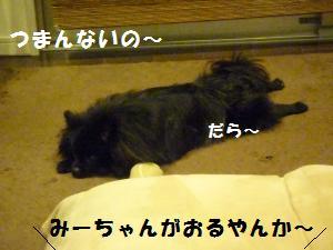 1008-1_convert_20081009081316.jpg