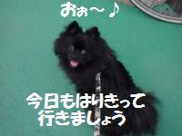 1010-1_convert_20081011013846.jpg