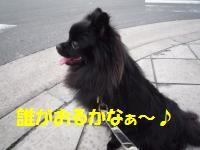 1010-2_convert_20081011013933.jpg