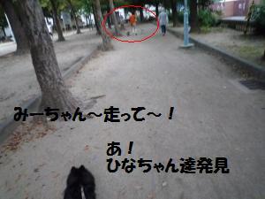 1010-4_convert_20081011014146.jpg